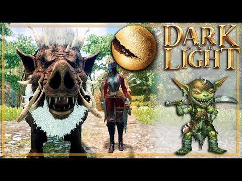 DARK and LIGHT : 2/ Premiers tamings !