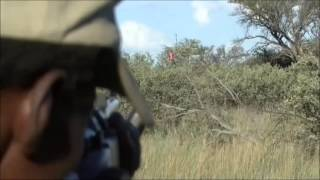 Tracker shooting 458 Lott