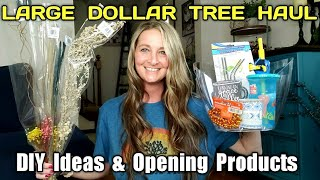 Large Dollar Tree Haul | Opening Products | Sharing Ideas| Name Brands| June 9