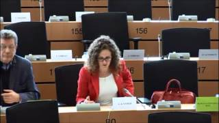Sophie in 't Veld LIBE Committee Pact on Democracy, Rule of Law and Fundamental Rights (21-04-2016)