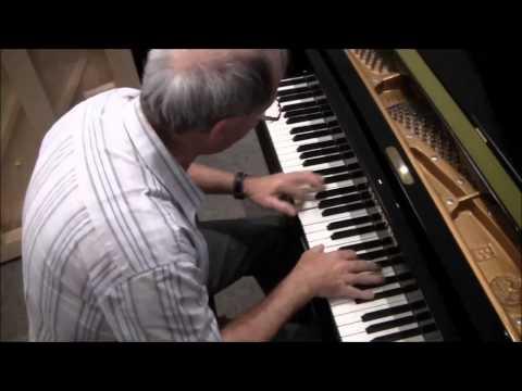 Kleines Konzert auf unserem C. BECHSTEIN-Flügel, Mod. B 203