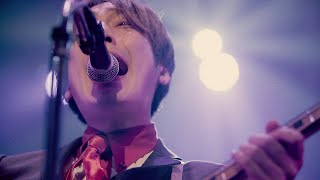 THE BAWDIES - SAD SONG Live Video