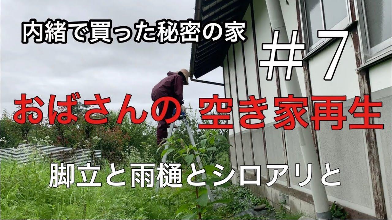 【空き家再生】#7/脚立を買いました/壊れた雨樋/シロアリかしら?