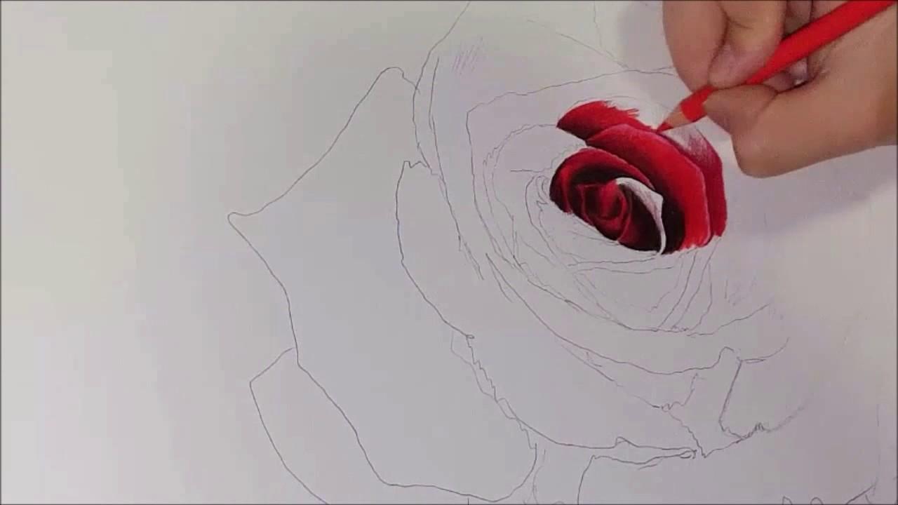 Kuruboya çalişmasikuruboya Resim Nasil çizilirgül çizimipart1