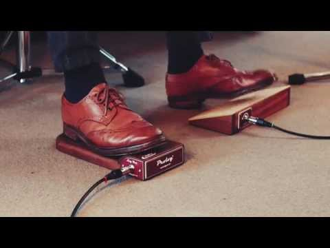 Prolog Analog Stomp Box Sapele video