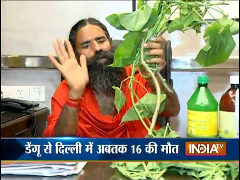Watch Home Remedies for Dengue Treatment by Baba Ramdev - India TV