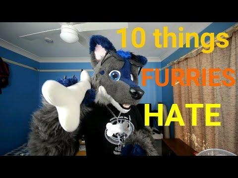 Top 10 Things Furries Hate