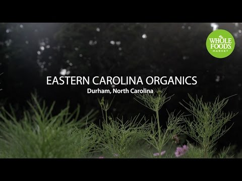 Eastern Carolina Organics l Whole Foods Market