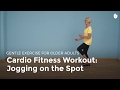 Aerobic Exercise: Jog on the Spot | Exercise for Older Adults