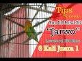 Metro Bird Festival Jarwo Lovebird  Ribu  Kali Juara  Tips Perawatan  Mp3 - Mp4 Download