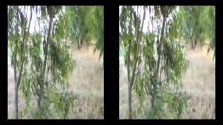 panasonic hdc sdt750 3d video sample review