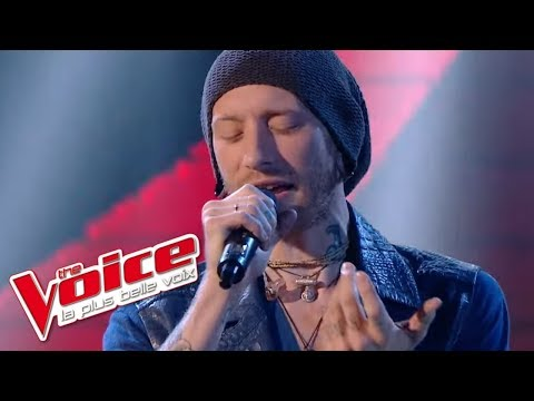 Aerosmith – I Don't Want To Miss A Thing | Pierre Edel | The Voice France 2014 | Prime 1
