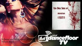 Tribute Band - Whenever Wherever - Remix - YourDancefloorTV