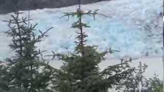 Juneau: Mendenhall Glacier Tour, Alaska