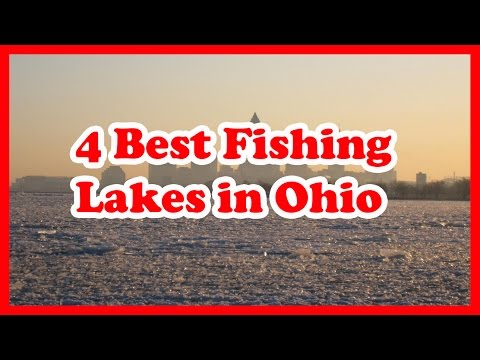 4 Best Fishing Lakes In Ohio | US Fishing Guide