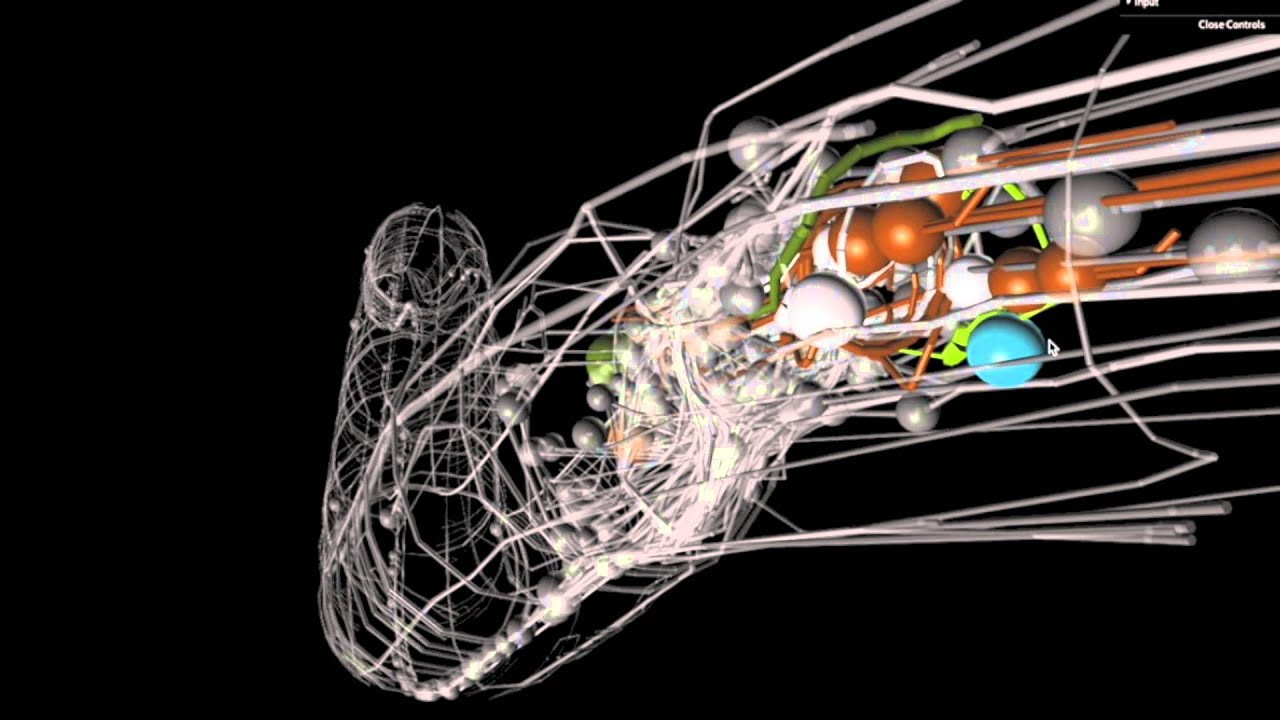 Surplus Of Synapses May Stunt Motor >> Blog Articles Ai Research