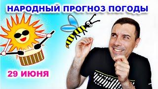 Народный прогноз погоды   Толкучка пчел и Грохот от Солнца   29.06.2020. Юмор