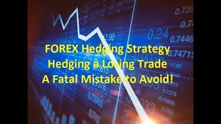 Forex Hedging Strategy A Fatal Mistake to Avoid