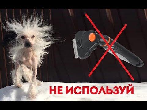 СЕКРЕТ ФУРМИНАТОРА! Каким собакам нельзя использовать для вычесывания!