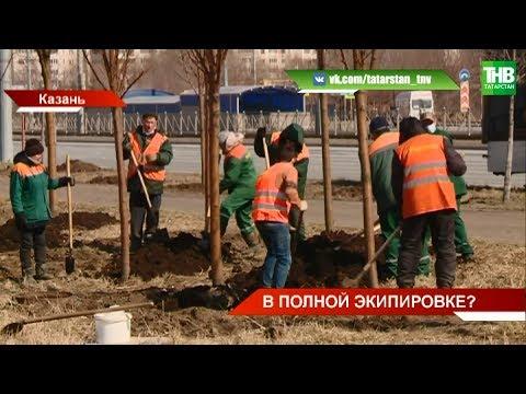 В период самоизоляции городские службы продолжают приводить в порядок улицы Казани 😷 ТНВ
