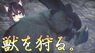 【 モンスターハンターライズ  :03】 初心者猫、獣を狩る。 【 猫塚大翔 】