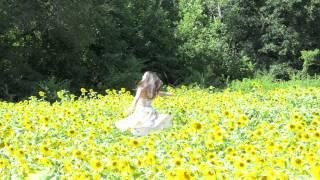 Titanium Music Video