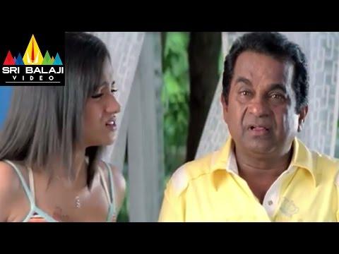 Krishna Telugu Full Movie Part 411  Ravi Teja, Trisha  Sri Balaji Video