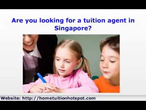 Tuition Agent - Efficient Tuition Agent at 64253326