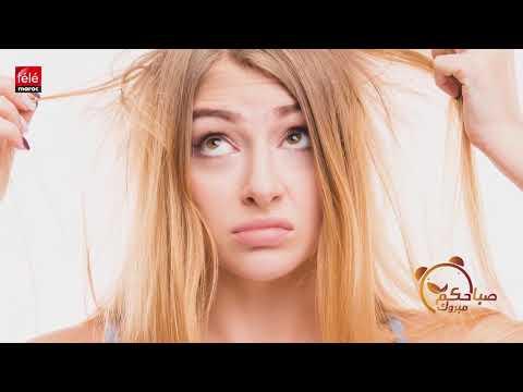 3ebcabf53 الأخصائي طلال أبو خصيب يقدم لكم نصائح للتخلص من مشاكل تساقط الشعر نهائيا -  تيلي ماروك