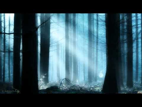 MDB   BEAUTIFUL VOICES 020 LISA GERRARD SPECIAL EDITION HQ mpg
