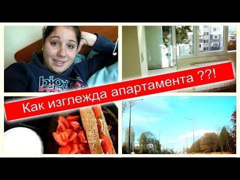Курсы ACCA DipIFR (rus) - Онлайн обучение Дипифр