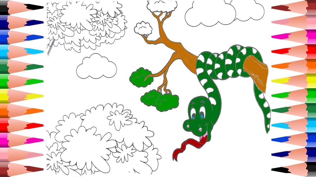 How to Paint Snake in Animals Coloring Book - Jungle Painting Snake ...