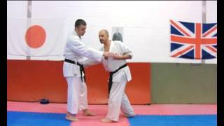 Nijushiho Bunkai Strategies 2012 wk28 karate kata koryu oyo jutsu