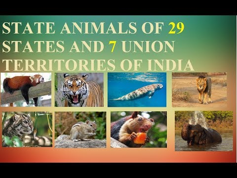 STATE ANIMALS OF 29 STATES AND 7 UNION TERRITORIES OF INDIA