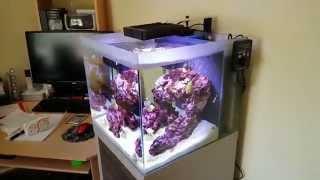 Reasonable 10-60w Wavemaker Powerhead Aquarium Circulation Adjustable Wave Maker With Pumps (water) Pet Supplies