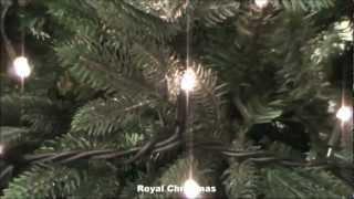Royal Christmas - 100 Lights Connectable Lighting