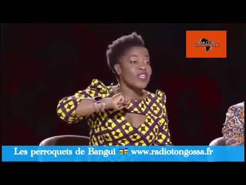 Les perroquets de Bangui sur le plateau de l'Afrique à un incroyable talent