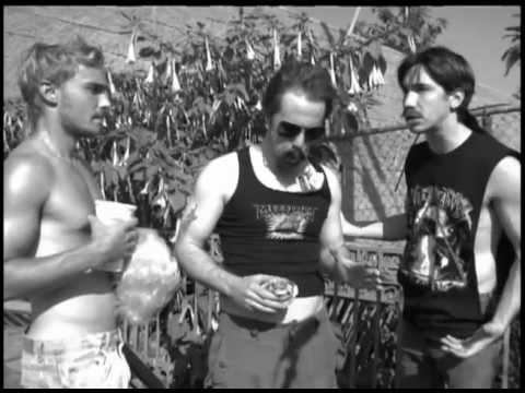 Zerk and Shirts: Junk Yard Dawgs
