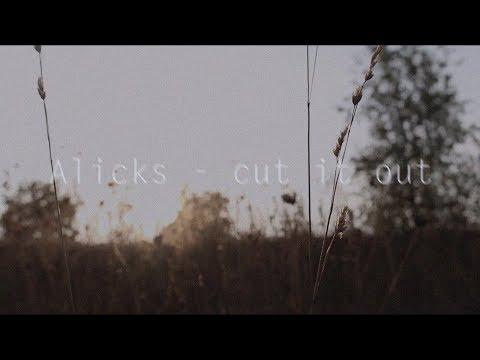 Alicks - cut it out (selfmade edit)