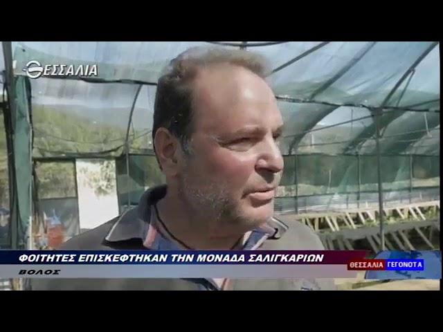 Ειδήσεις Θεσσαλία TV Σαλιγκαροτροφία 05 10 2019