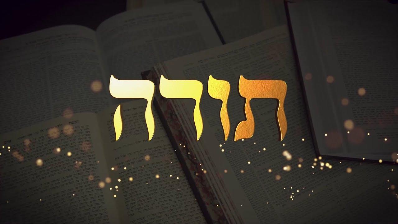 Shloime Dachs | Torah | Official Video | תורה - שלומי ודוד דקס