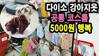 다이소강아지옷 5000원의 행복! 강아지옷 애견옷 다이…