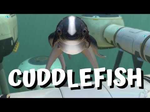 Full Download] Subnautica Cuddlefish Update 4