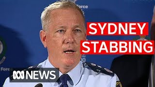 sydney-stabbing-suspect-had-history-of-mental-health-issues-police-say-abc-news
