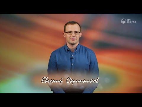 Евгений Скрипников |