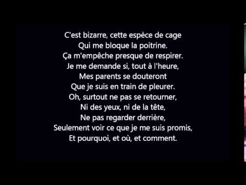 Michel Sardou - Je Vole Paroles/Lyrics