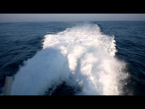 Whale watching - on board Navy boat - Princes of Lanka