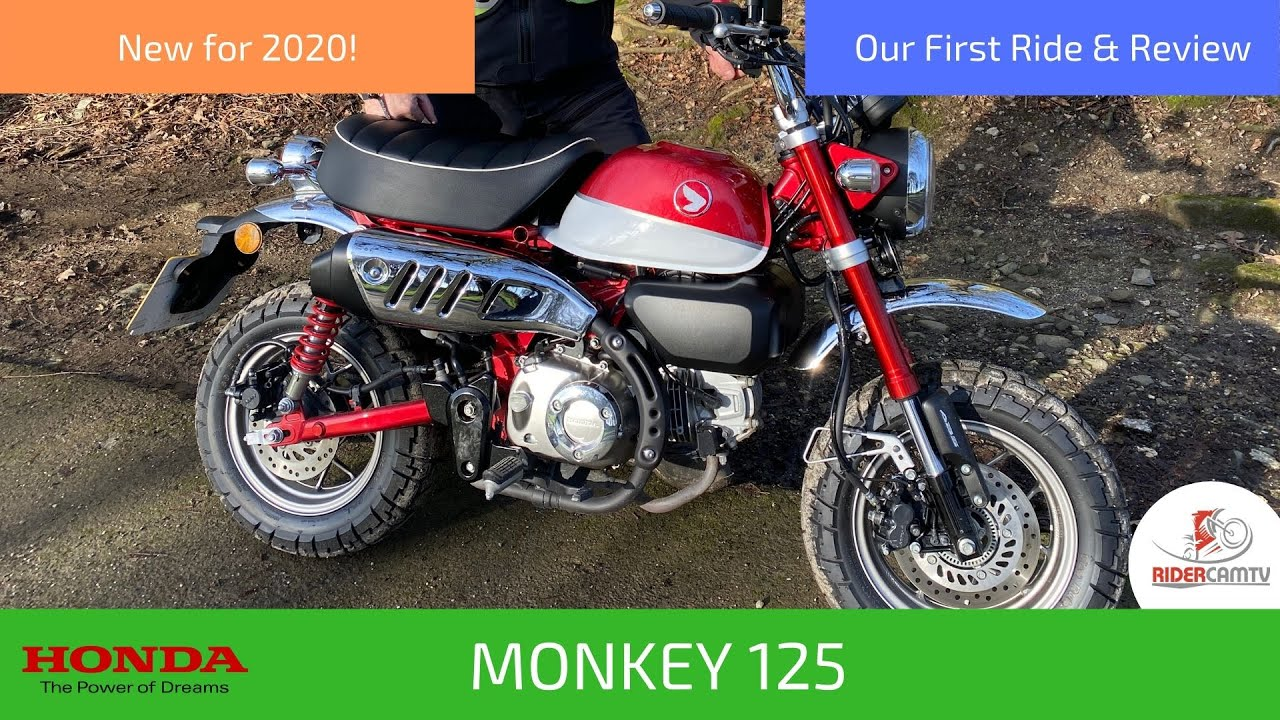 2020 Honda Monkey 125 Our First Ride And Review Youtube