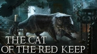 Is Rhaenys Targaryen's Cat being Warged? | Balerion the Black Cat | Game of Thrones