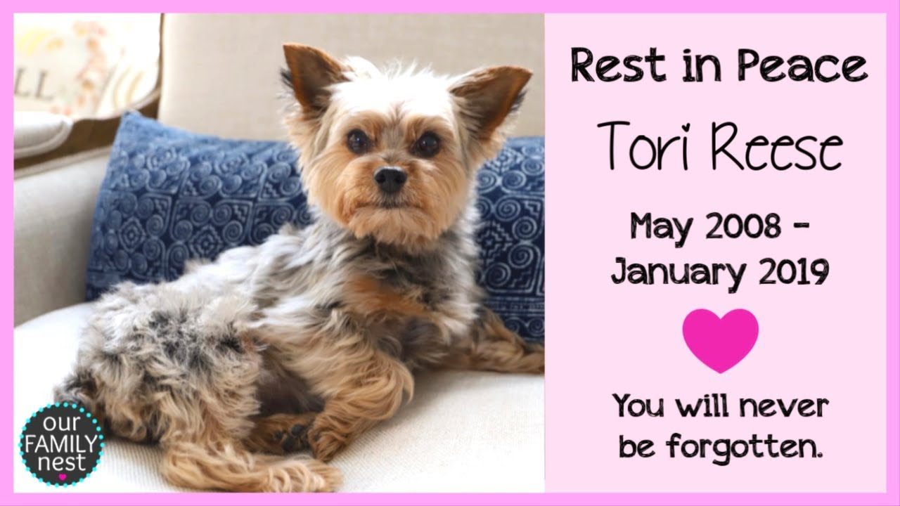 we-will-never-forget-her-rest-in-peace-tori